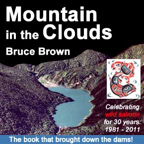 Mountain in the Clouds by Bruce Brown