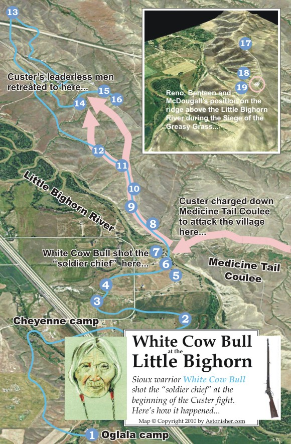 White Cow Bull At The Little Bighorn