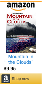 Mountain in the Clouds by Brucve Brown