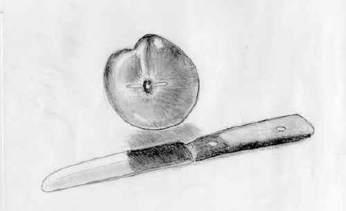 Peach Sketch by Bruce Brown