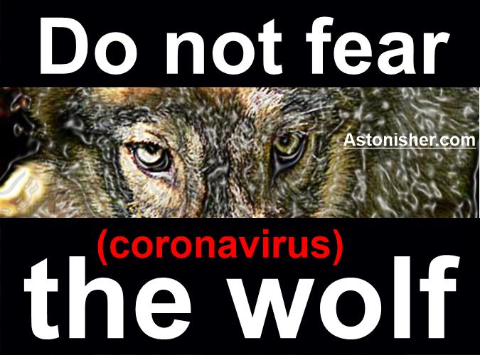 Do not fear the (coronavirus) wolf.