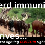 Herd immunity arrives