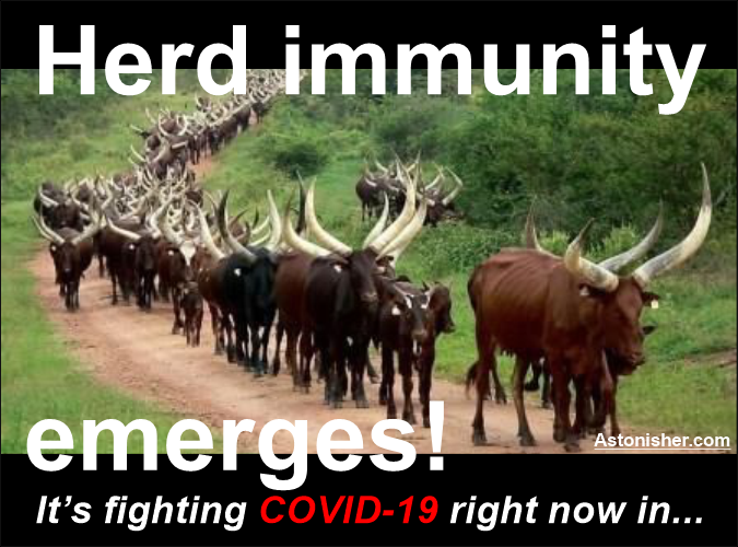 Herd immuity emerges! astonisher.com